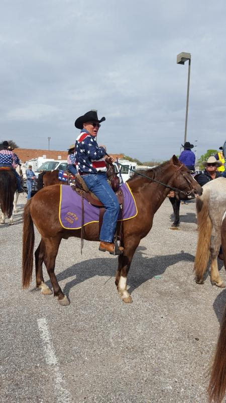 Hombre EZ, Paso Fino Gelding for sale in Louisiana