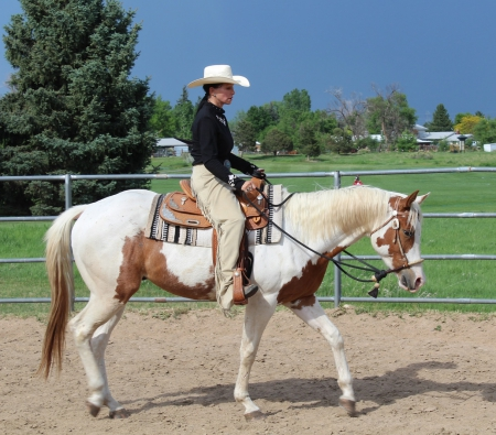 Cherokee After Math, American Paint Horse Association Gelding for sale in Colorado