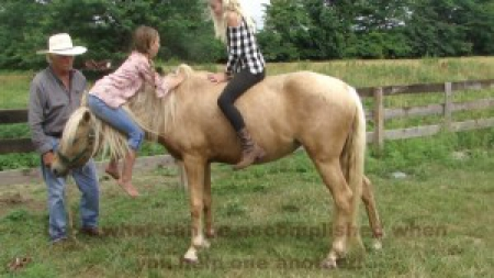 Reagan Jaymes is a Registered Missouri Foxtrotter Pony , Ponies Mare for sale in Missouri