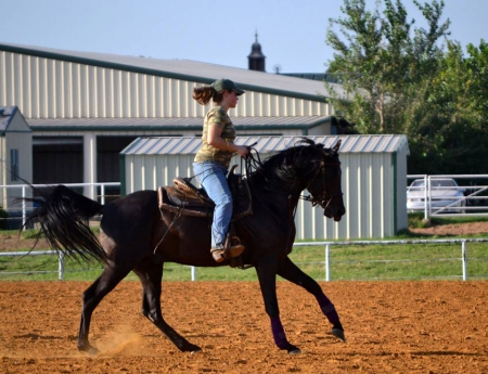 Horse training lessons and boarding, American Quarter Horse Filly for sale in Oklahoma