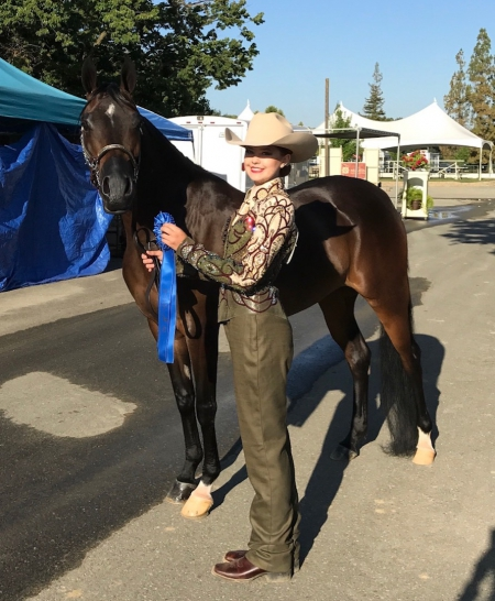 SVR Lost Girl, Arabian Mare for sale in Nevada