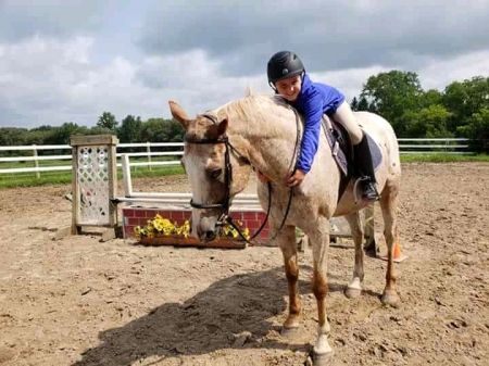 Splash, Appaloosa Gelding for sale in Oregon