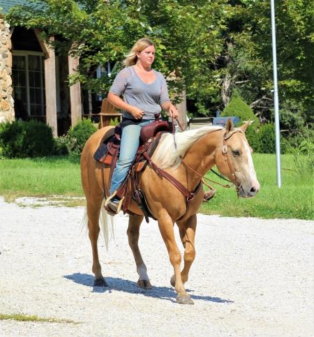 Waylon, American Quarter Horse Gelding for sale in Missouri