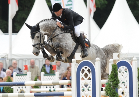 H Smoke, Dutch Warmblood Gelding for sale in New Jersey