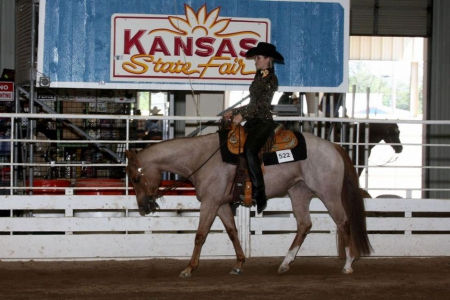 Dream A Lil Dream, Appaloosa Mare for sale in Kansas