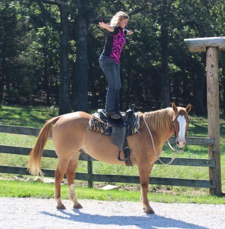 Duke, American Quarter Horse Gelding for sale in Missouri