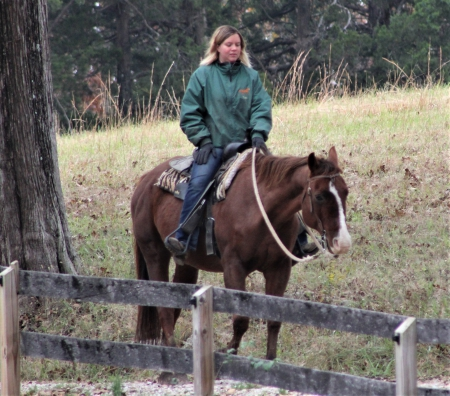 Red Magic Valentine, American Paint Horse Association Gelding for sale in Missouri