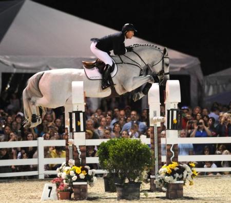 Super Amazing Schoolmaster Jumper Holsteiner Sport Horse!, Holsteiner Gelding for sale in Texas