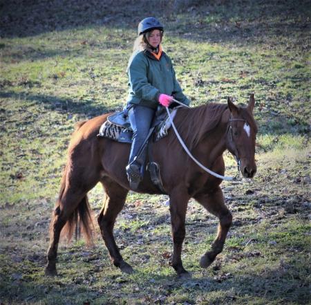 Brodie, American Quarter Horse Gelding for sale in Missouri