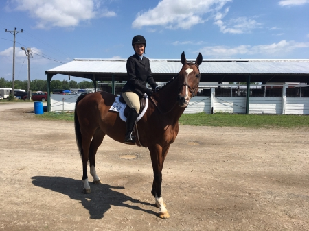 Coax Kid (OG), Thoroughbred Gelding for sale in New York