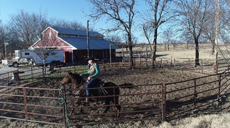 RHR Smoken Hibrow, American Quarter Horse Gelding for sale in Oklahoma