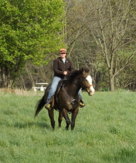 Twist, American Quarter Horse Gelding for sale in Kentucky