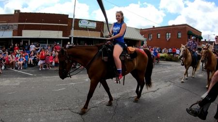 I'm All Shook Up aka Sonny , Missouri Fox Trotting Horse Gelding for sale in Missouri