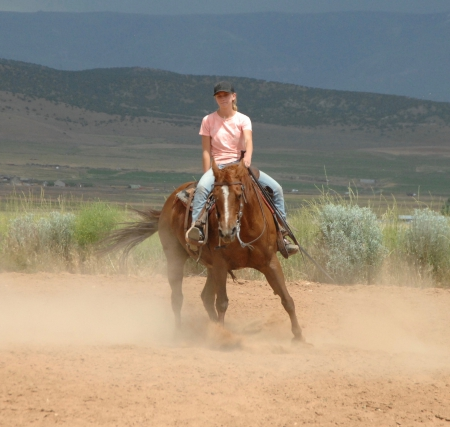 Freckles, American Quarter Horse Mare for sale in Utah