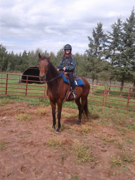 Lea La Camina, Thoroughbred Mare for sale in Wisconsin