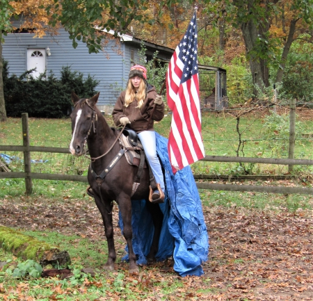 Brownie, Tennessee Walking Horses Gelding for sale in Michigan