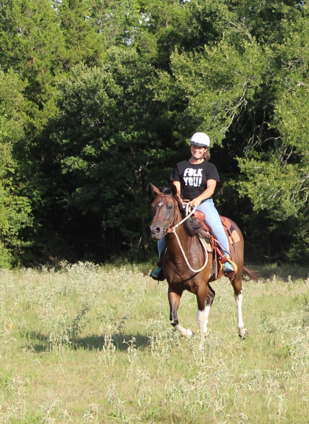 Hope, Pinto Mare for sale in Texas