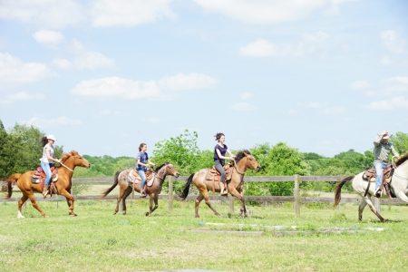 Tallulah, Quarter Pony Mare for sale in Texas
