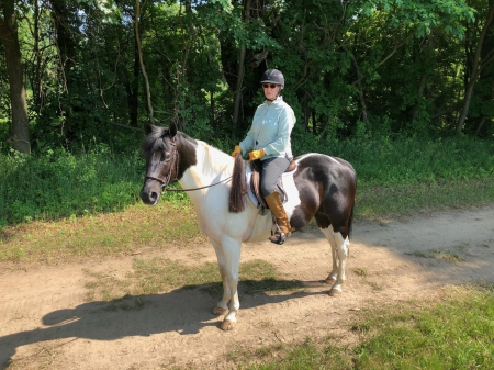 Leo's Royal Impression, American Paint Horse Association Gelding for sale in Michigan