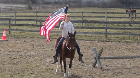 Gaited Missouri Foxtrotter Pony Spotted Dun, Ponies Mare for sale in Pennsylvania