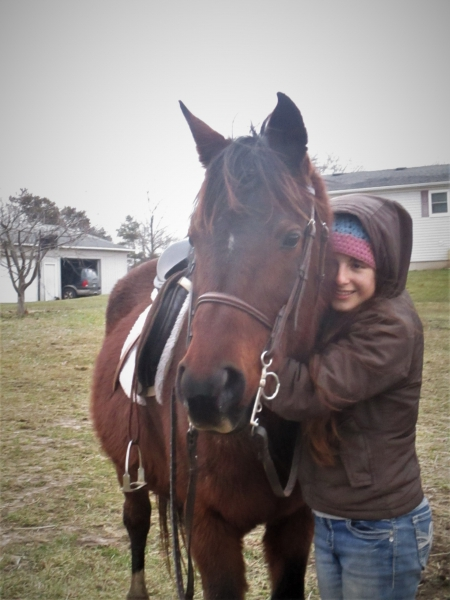 Jasmine, Arabian Mare for sale in Michigan