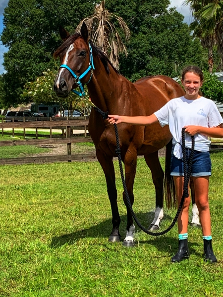 Princess Penelope, Thoroughbred Mare for sale in Florida