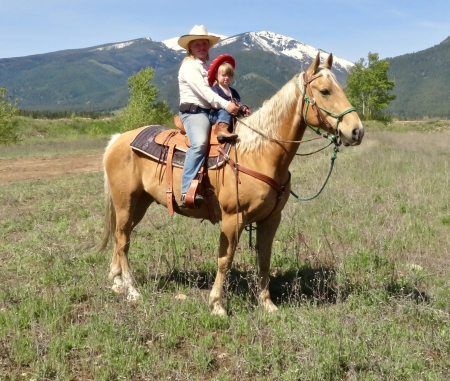 Magnum, American Quarter Horse Gelding for sale in Montana