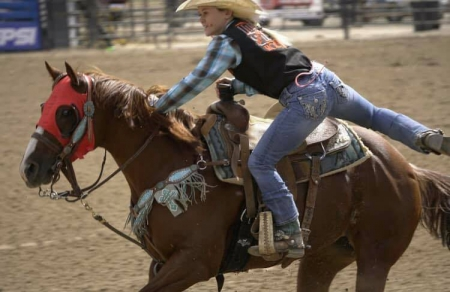 TC PRECIOUS ROSE (Dixie), American Quarter Horse Mare for sale in Arizona