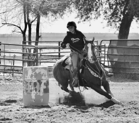 DoubleShotOfShiner, Appendix Quarter Horse Mare for sale in California
