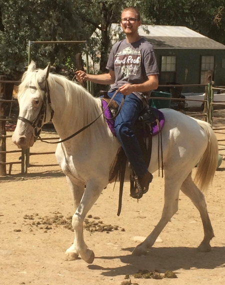 Freya, Appaloosa Mare for sale in Colorado