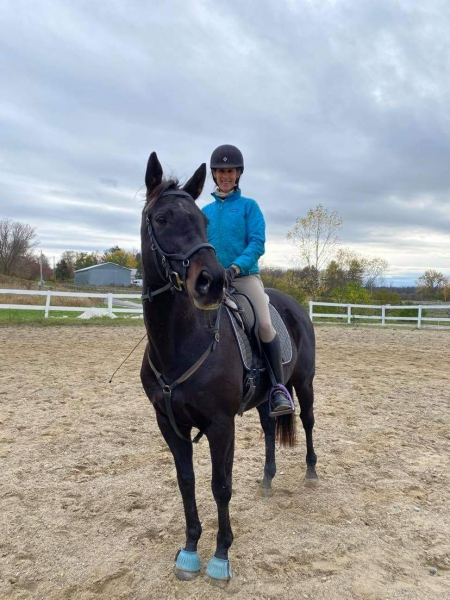Tilda Marie, Thoroughbred Mare for sale in Vermont