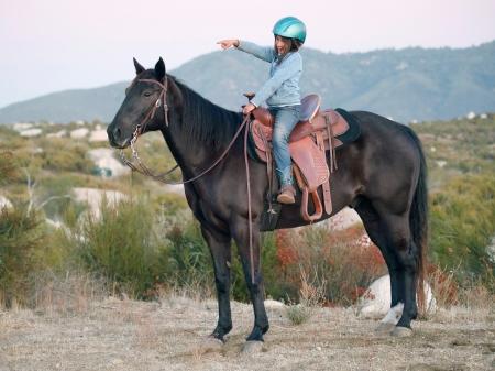 Ceasar - Aristocrat Class AQHA Gelding for Sale, American Quarter Horse Gelding for sale in California
