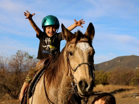 Christmas Special - Minuet!, Buckskin Mare for sale in California