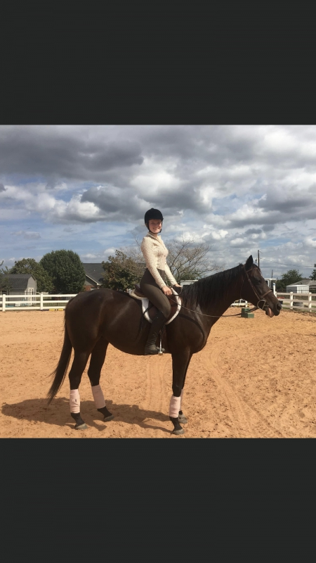 A drink and a wink , Thoroughbred Mare for sale in Texas