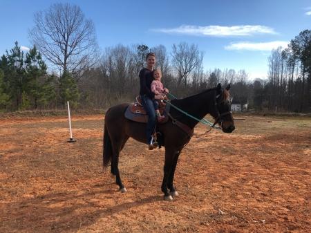 Bruce, Thoroughbred Gelding for sale in North Carolina