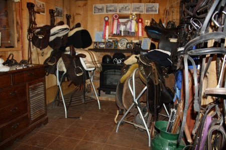 Picturesque Equestrian Center Myhorseforsale Com Real